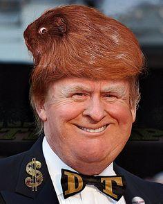 The artful Donald Trump is a shit-head meme