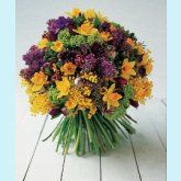 daffodils=spring (flowers by Paula Pryke)