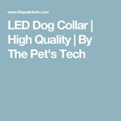 LED Dog Collar   High Quality   By The Pet's Tech
