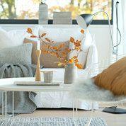 moderna laminat good moderna laminat vario sandstein. Black Bedroom Furniture Sets. Home Design Ideas