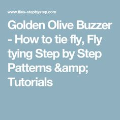 Golden Olive Buzzer - How to tie fly, Fly tying Step by Step Patterns & Tutorials