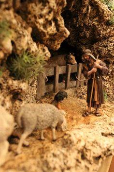 Bar and shepherd