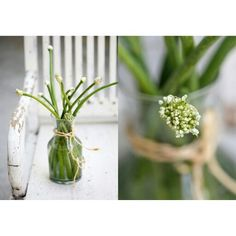 Onions Scapes or blossoms, greens that spell Spring!
