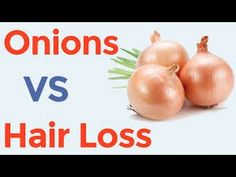 How to use Onion Juice for Hair Loss Treatment -  How To Stop Hair Loss And Regrow It The Natural Way! CLICK HERE! #hair #hairloss #hairlosswomen #hairtreatment How onion Juice helps in the hair fall and hair loss? The answer lies in the high sulphur content in the onions which boosts the circulation of blood and also play a vital role in the... - #HairLoss