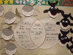 Mrs. Vento's Kindergarten: Ocean An idea for a research project...