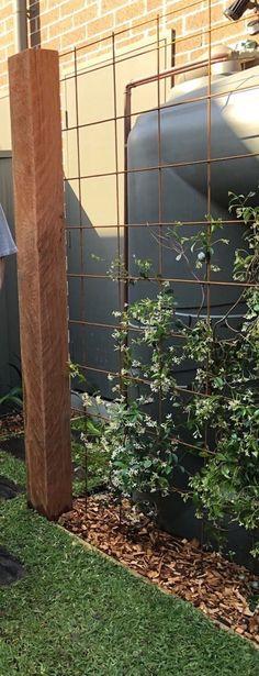 61 Trendy Ideas For Garden Screen Plants Decks Back Gardens, Small Gardens, Outdoor Gardens, Indoor Garden, Side Garden, Garden Trellis, Metal Trellis, Potager Garden, Small Garden Design