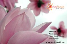 Pranic healers in bangalore dating