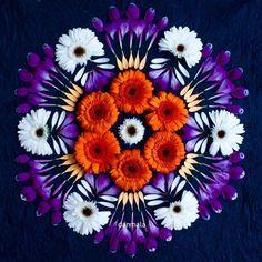 Flower Circle, Flower Mandala, Mandala Art, Flower Art, Art Flowers, Dried Flowers, Gerbera, Zentangle, Acid Art