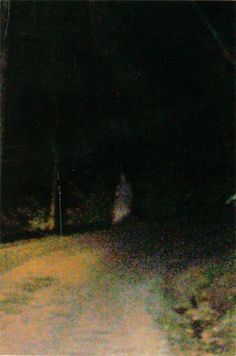 Paranormal Photo Gallery: Ghost Soldier of Devil's Den