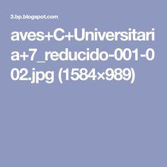 aves+C+Universitaria+7_reducido-001-002.jpg (1584×989)