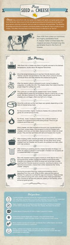 From Seed to Cheese Infographic