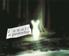 """Harry Potter Etymology   Patronus Charm (""""Expecto Patronum"""") Patronus means """"protector"""", """"guardian"""", or simply """"patron"""" in Latin, specifically reflecting the entire role that the Patronus Charm plays. The Latin word exspecto or expecto means """"I look out for"""" or """"I wait for"""", thus the charm's incantation roughly translates into """"I await a protector."""""""