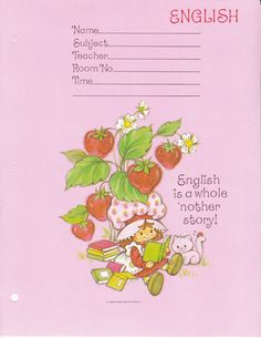 SSC Dividers - English