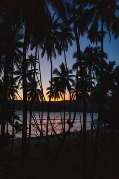 tropical sunsets that never disappoint....@namaleresort in Fiji #traveltuesday