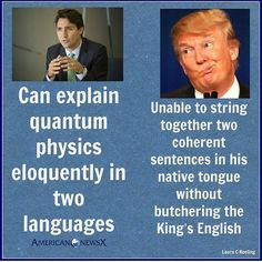 And sadly I know people who think Trudeau is an idiot and that trump is brilliant! All That Matters, Republican Party, Liberal Party, Caricatures, Dumb And Dumber, In This World, Just In Case, Donald Trump, Shit Happens
