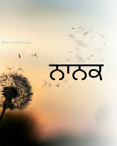 ❤waheguru ji ❤ Vichara in his world / insta - Holy Quotes, Gurbani Quotes, Love Quotes In Hindi, Best Love Quotes, Truth Quotes, Qoutes, Guru Nanak Ji, Nanak Dev Ji, Guru Granth Sahib Quotes