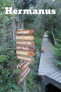 The various trails in the reserve offer magnificent and unequaled views of Walker Bay, the Hemel en Aarde Valley and Maanskynbaai. Tourist Information, Nature Reserve, Coast, Africa, Hiking, Walks, Trekking, Hill Walking, Afro