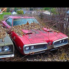 on-edge1970: #1970 #dodge #coronet #superbee @theautoarcheologist 's pic! Thx!:)…