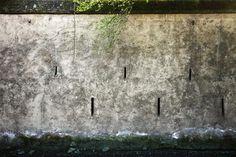 The Walls #20
