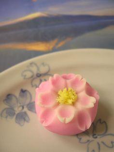 sakura - cherry blossom Japanese Wagashi, Japanese Cake, Japanese Sweets, Japanese Food, Eclairs, Sweet Treats, Yummy Treats, Sushi Party, Asian Desserts