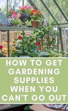 Garden Yard Ideas, Easy Garden, Planting Bulbs, Planting Flowers, Gardening Supplies, Gardening Tips, Garden Power Tools, Plant Labels, Mini Greenhouse