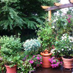Nice Garden in Germany