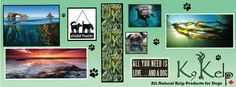 all natural kelp products for dogs