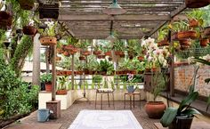 Aluminium and Wooden Greenhouses – Greenhouse Design Ideas Garden Deco, Tropical Landscaping, Backyard Landscaping, Landscape Design, Garden Design, Orchid House, Small Japanese Garden, Dome Greenhouse, Wooden Greenhouses