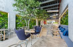 T.Bar: enormous living green walls of lichen and moss line refreshing Panama fusion restaurant // @inhabitat  Photos by Mosh Benjamin, http://propixelpanama.com/