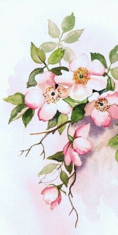 Watercolor Flowers, Watercolor Paintings, Watercolor Ideas, Watercolor Techniques, Watercolours, Painting Art, Flower Art Drawing, Easy Paintings, Pictures To Paint