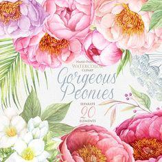 Peonies Watercolor Flowers Clipart. BOHO Hand por ReachDreams