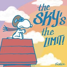 Fotos Snoopy de plata 6/x 6/cm