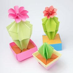 Origami Cactus & Flower  Which one is your favourite?  #origami #paperfolding #origamicactus #origamicacti #origamiplant #cute #kawaii #paper #paperkawaii #foldoftheday #instaorigami