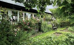 I dream of having an edible oagarden!!!!!!!!!!!!!! Inside a Whimsical London Townhouse