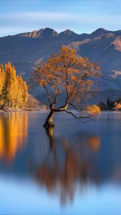 Beautiful landscapes of nature