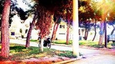 Η Γειτονιά της Εβδομάδας: Πάτημα Χαλανδρίου