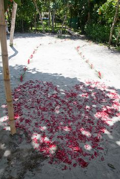 #ParadiseAwaits The Beach was decorated with a Heart for us to stand in for our vows.