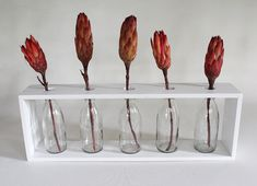 7 Prodigious Tips: Glass Vases Candle pink vases floral arrangements.Vases Drawing Still Life tall geometric vases.
