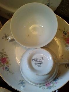 Bristol China