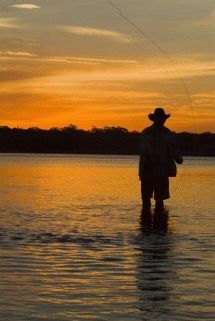 Freshwater fishing can be a great experience. Find out more about freshwater fishing including useful tips and how to stay safe when you are on the water. Trout Fishing Tips, Bass Fishing, Fishing Trips, Adventure Activities, Big Sky, Outdoor Gear, Pond, Places To Visit, Things To Come