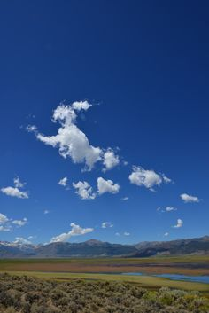 Rabbit in the sky