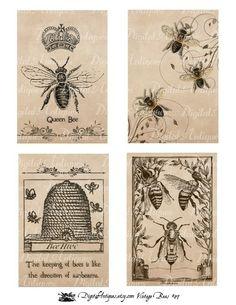 Vintage Bees Printable Images via Etsy. Vintage Ephemera, Vintage Bee, Vintage Prints, Scrapbooking Vintage, Printable Images, Printable Vintage, Paper Art, Paper Crafts, Bee Crafts