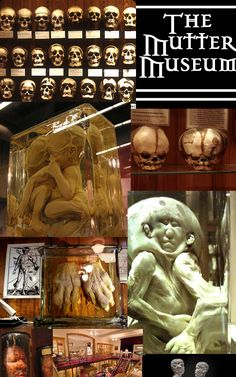 Philadelphia-The Mutter Museum - The Mütter Museum has an extensive archive of past and permanent exhibitions. We invite you to explore our world and become Disturbingly Informed. Vacation Trips, Day Trips, Brotherly Love, Philadelphia Pa, Historical Sites, Travel Usa, Creepy, Invite, History