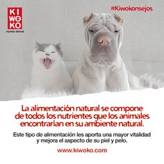 #Kiwokonsejo ¡El pienso natural son todo ventajas!