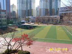 The place where I play Soccer!