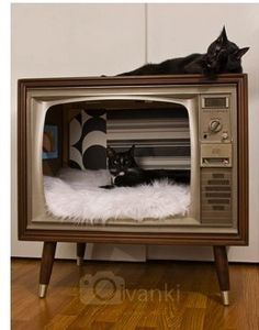 Find an old TV at Goodwill and turn it into this!  One person's trash is a kitty heaven.