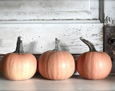 TITLE: Pumpkin Trio PRINT SIZE: 8x10, 11x14, 16x20 {Choose from drop-down menu}  Need a different size? http://etsy.me/1dMwxwM  Need it on canvas?