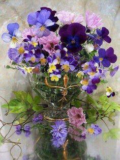 bouquet of violets and pansies My Flower, Purple Flowers, Flower Art, Beautiful Flowers, Simply Beautiful, Violets Flower, Purple Hues, Cactus Flower, Exotic Flowers