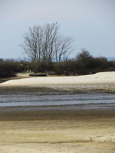 La plage et le chenal à marée basse, port de La Hume, Gujan-Mestras, Gironde, Aquitaine, France.