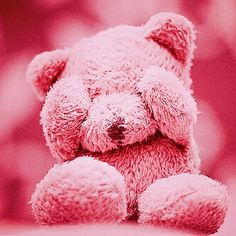 "The fluffy pink bear: ""Oh, Tim, I'm so ashamed since you're a guy and all that, but Catarina sent me to you; not my fault... she gets like this on Sundays, maybe (sigh)"". Sleep well!"
